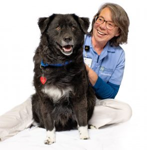 FMC Pet Therapy dog Jakes