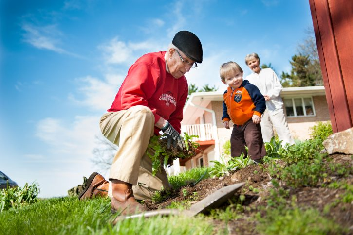 Senior heart patient planting flowers with wife and grandson